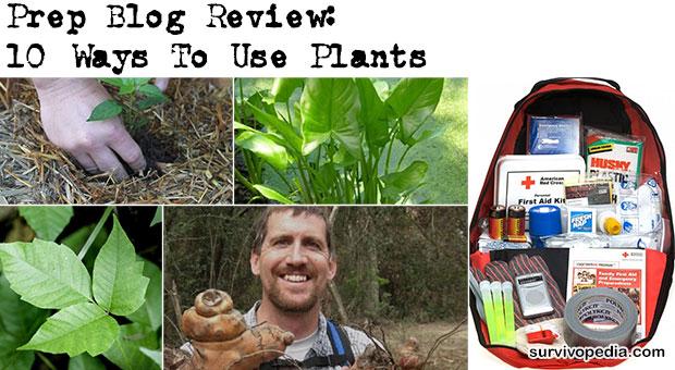 Prep Blog Review 10+ Ways To Use Plants Survivopedia