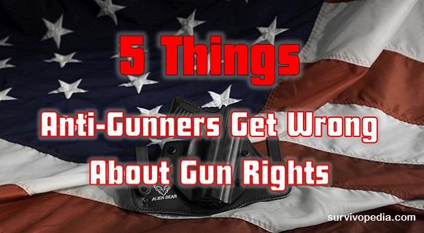 Survivopedia 5 things about gun control