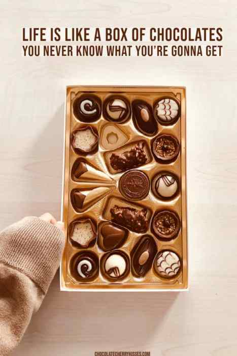 Life is like a box of chocolate, a famous quote
