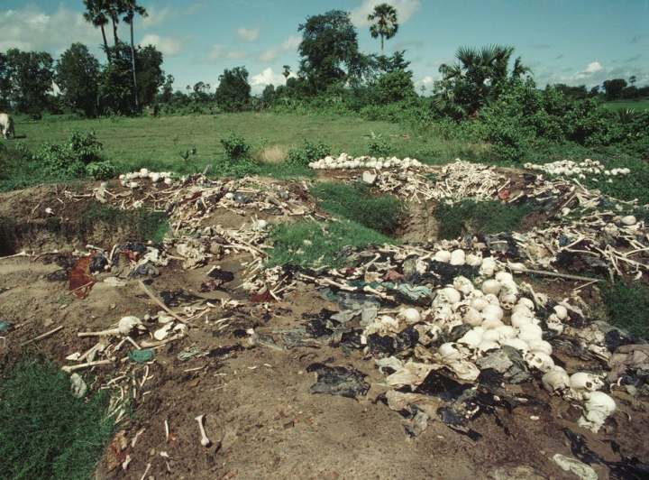 A soil filled field strewn with white bones and skulls with dark trees in the background. dark tourism