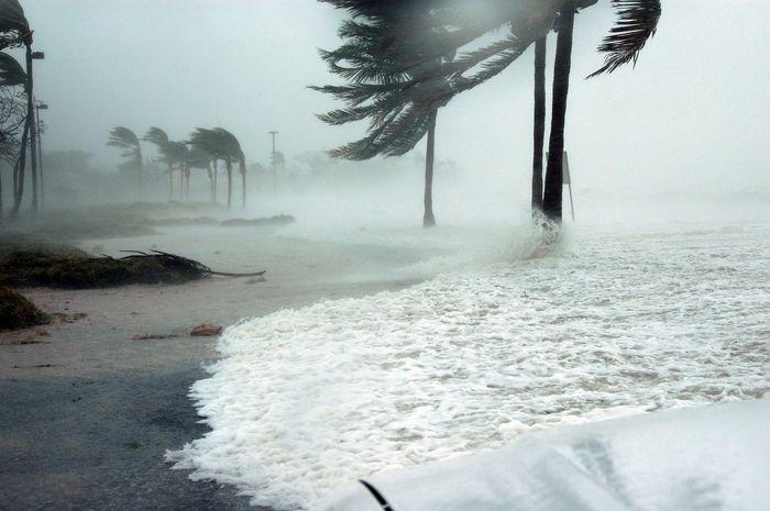 Devastating Hurricane
