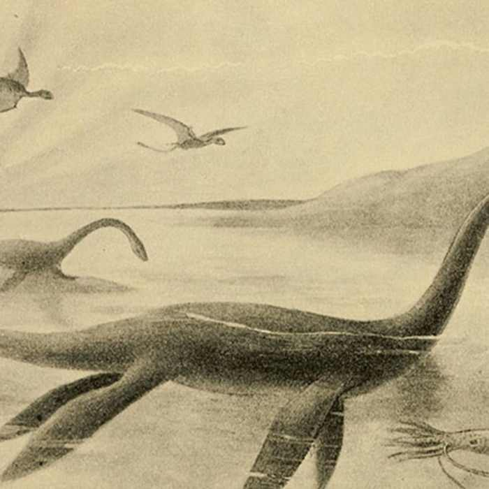 An illustration of the Loch Ness monster.