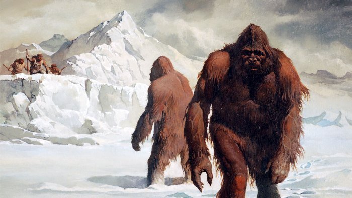 Large, hairy creatures in the snow.