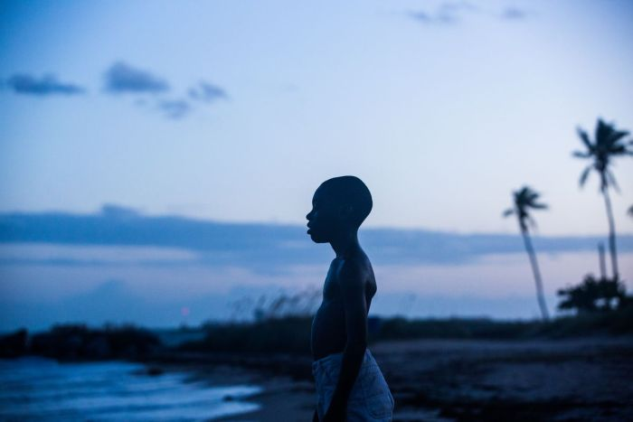 Young boy stands facing sideways, sihoueted by trees and the setting sun.