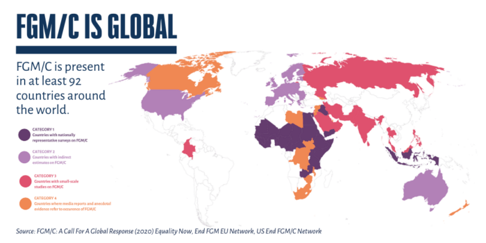 """The image of the statistical coverage and studies on FGM/C around the world. It marks countries in 4 colors based on their level of coverage, studies on and occurrence of FGM/C. The image also reads """"FGM/C is present in at least 92 countries around the world"""". ."""