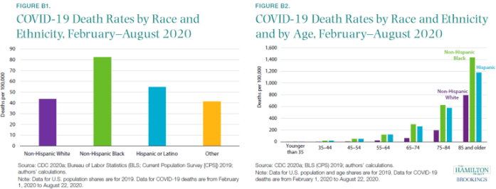 the image of two graphs showing the black and hispanic, non hispanic black people's death rates according to age