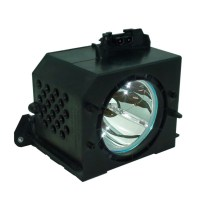 Philips Lamp Housing for Samsung ST61L2HD Projection TV ...