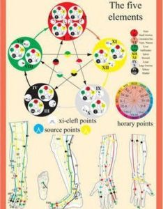 Five elements in acupuncture  also rh bookdepository