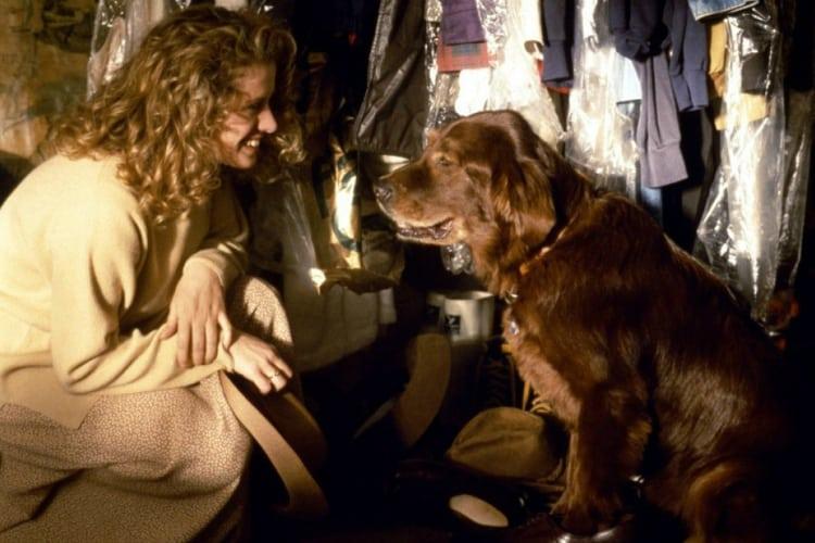 filmes-de-cachorro-6