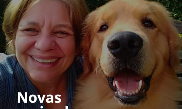 DogHero atinge a marca de 10 mil heróis cadastrados: assista ao vídeo comemorativo