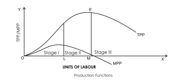 In The Diagram Total Product Will Be At A Maximum At