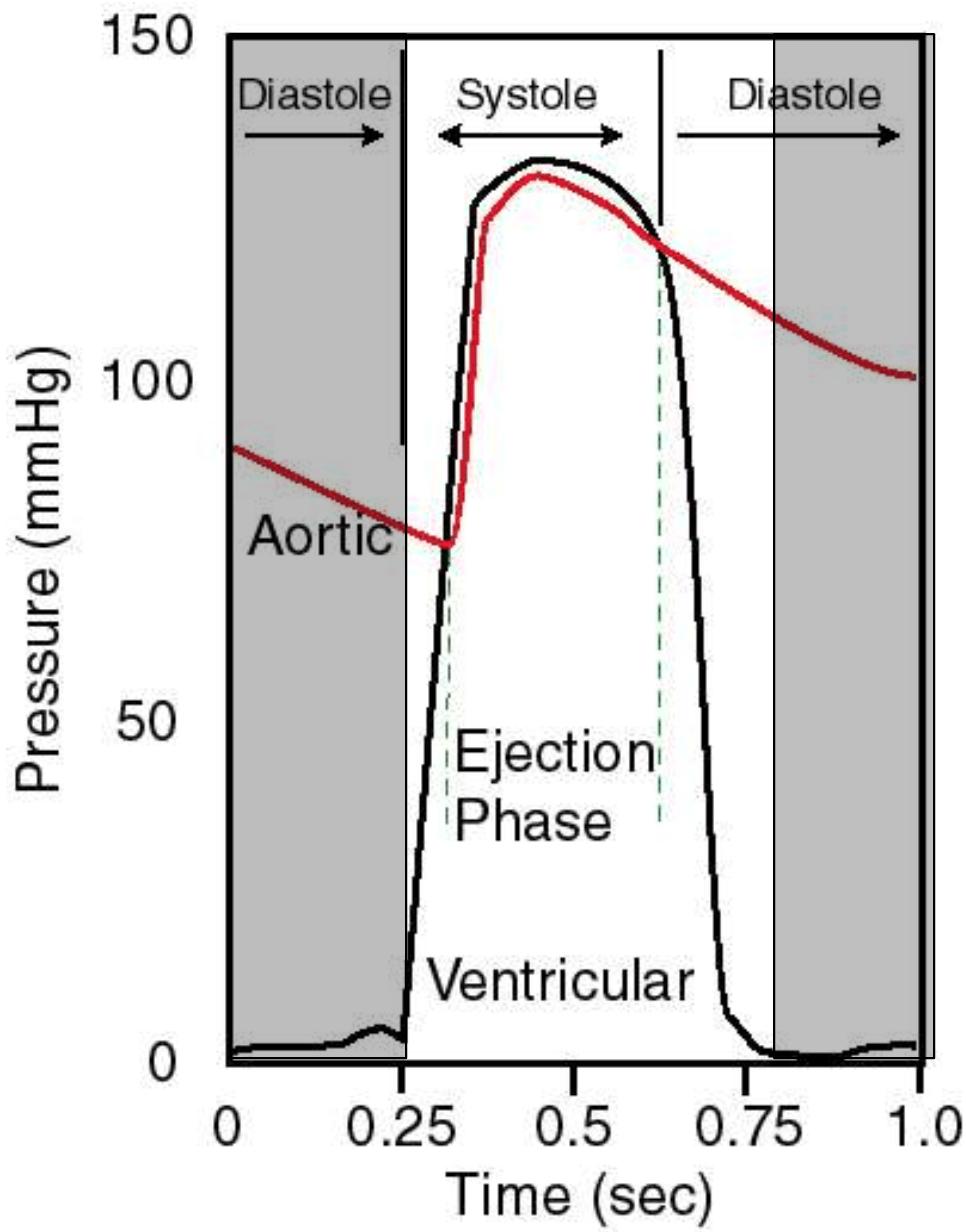 medium resolution of  diastasis after isovolumic relaxation