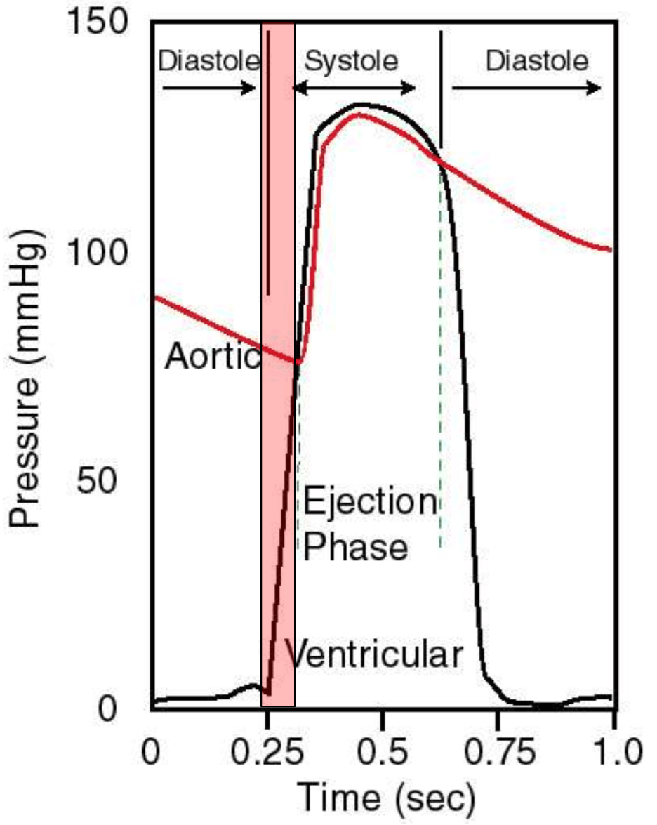 hight resolution of isovolumic contraction