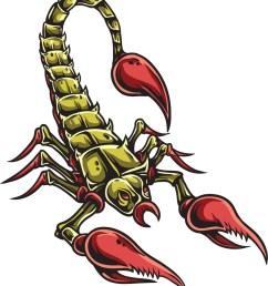 scorpion vector element [ 882 x 1000 Pixel ]