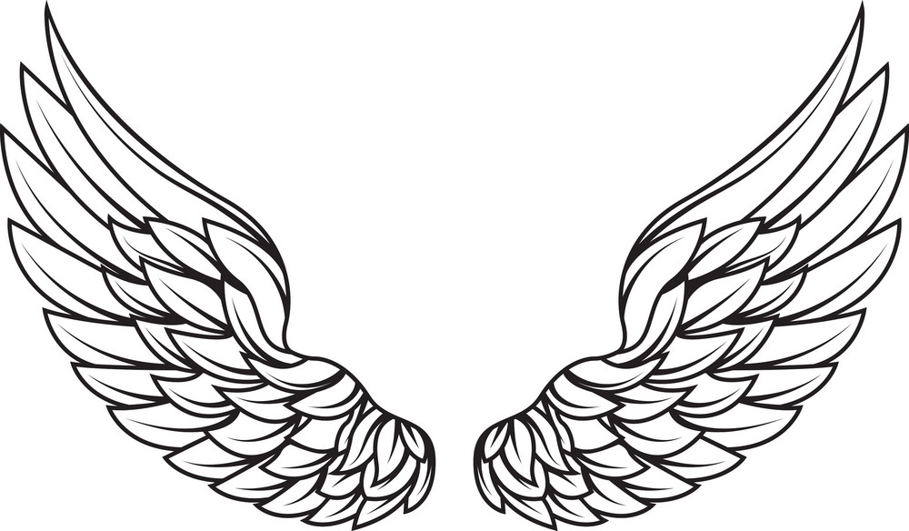 Wings Vector Element Royalty-Free Stock Image