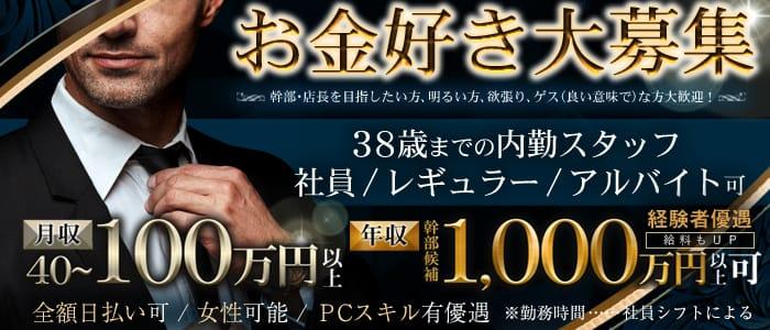 Honey Trap Revolutionの募集詳細|東京・新橋の風俗男性求人|メンズバニラ