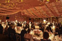 Reception Dcor Photos - Ceiling Drapes at Wedding ...
