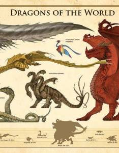 Dragons of the world with size comparison chart also dragon and monster charts  pub rh