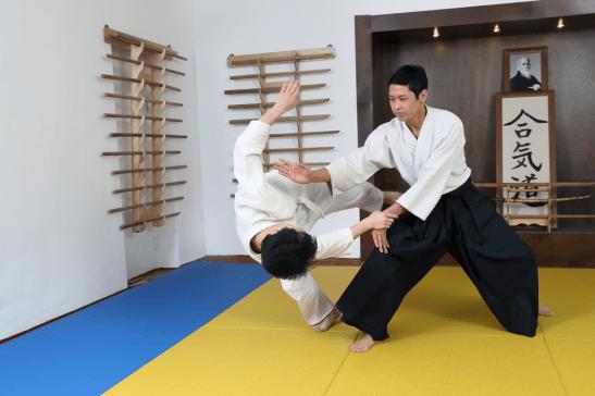 Aikido Action Shot