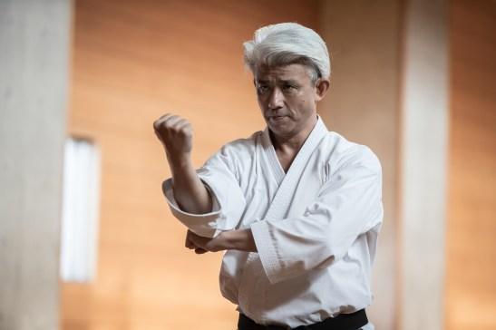 Karate-ka Karate Practitioner