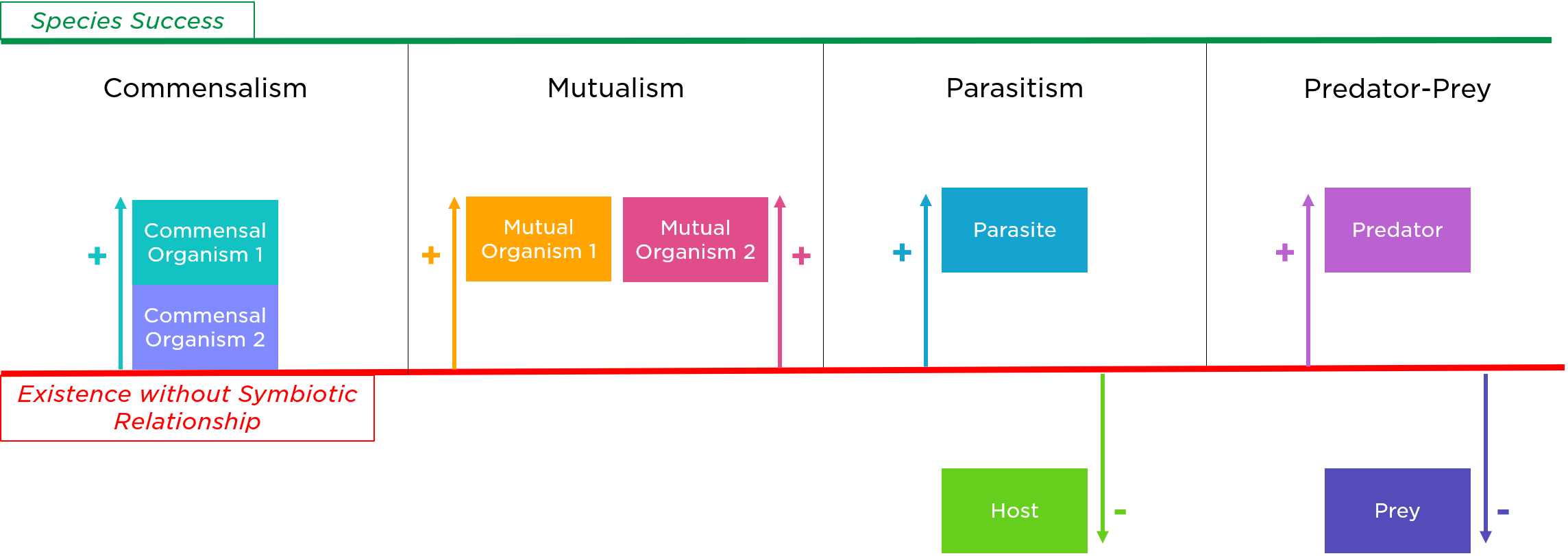 Commensalism Definition Amp Examples