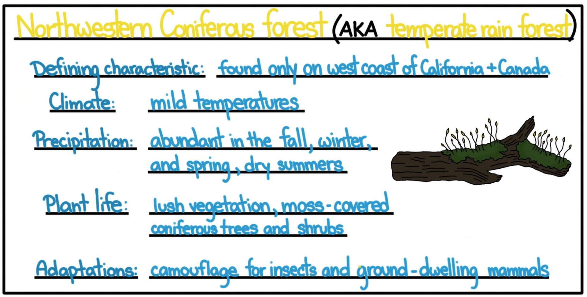 These birds have special characteristics that make them able to survive. Temperate Biomes Forests Plains Woodlands Shrublands Expii