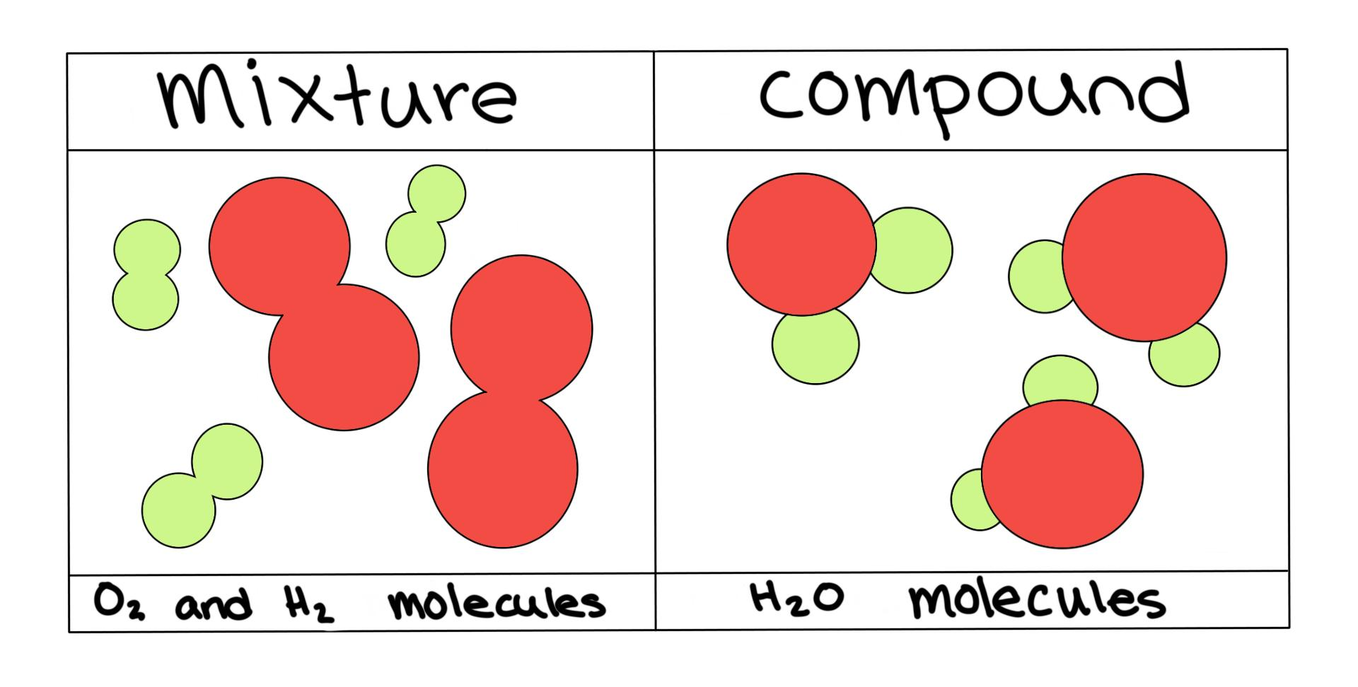 Biology Homogeneous Vs Heterogeneous Mixtures