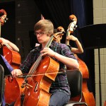 Cellos and basses