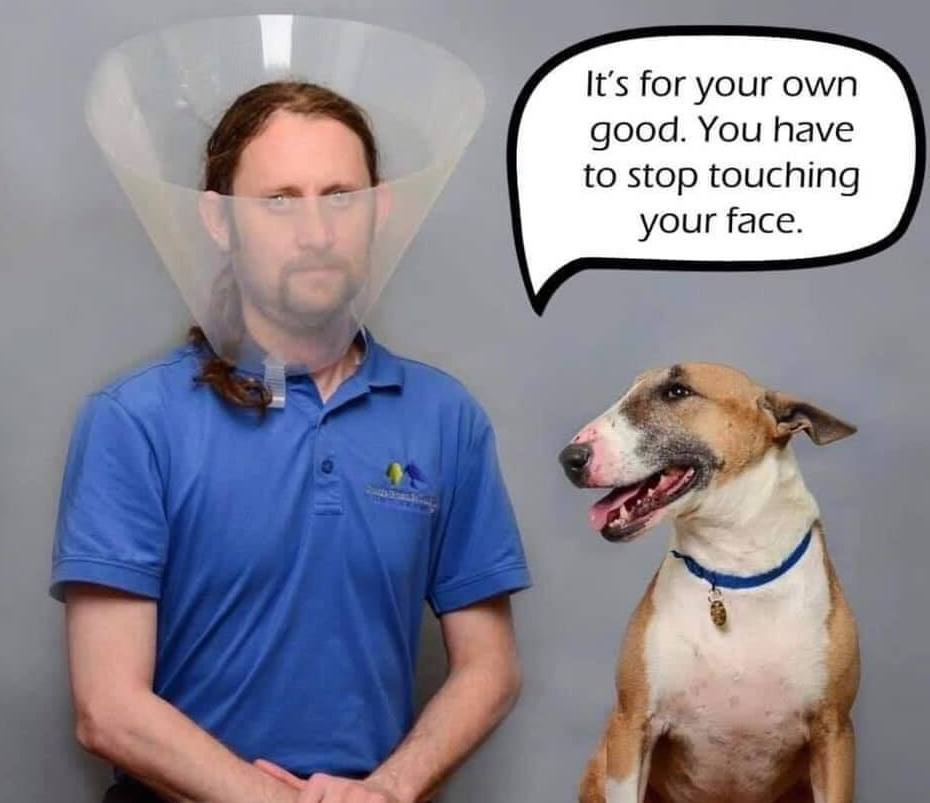 Corona Virus Memes 2020 Funny