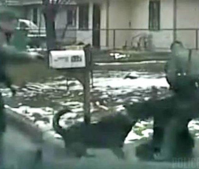 Woah Nevada Cop Commands K To Attack Surrendering Suspect World Star Uncut