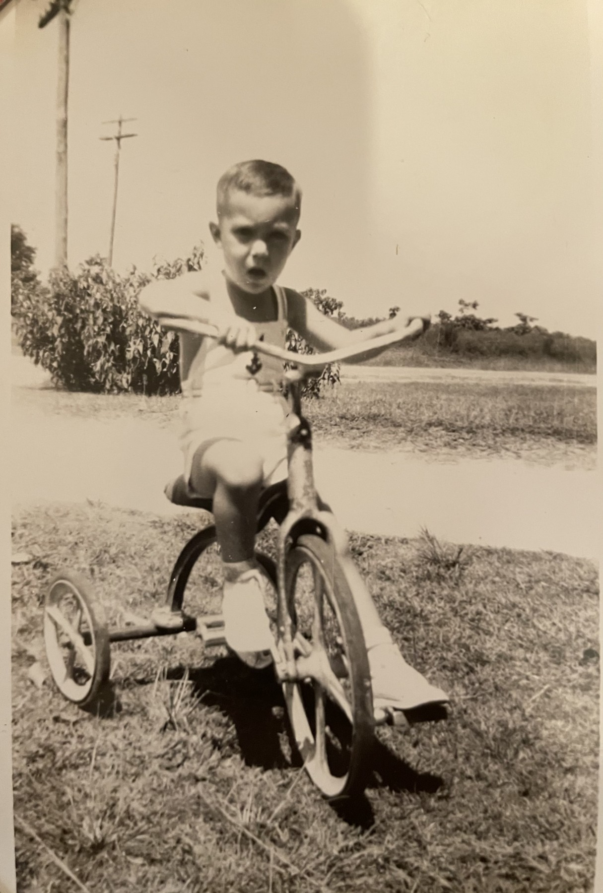 Giant Bikes Houston : giant, bikes, houston, George, DeFranco, Obituary, Gadsden,