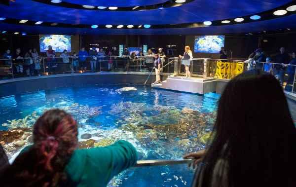 England Aquarium Seeks Urge Visitors Act
