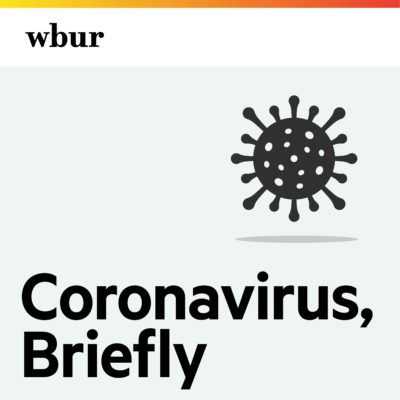 Coronavirus, in brief