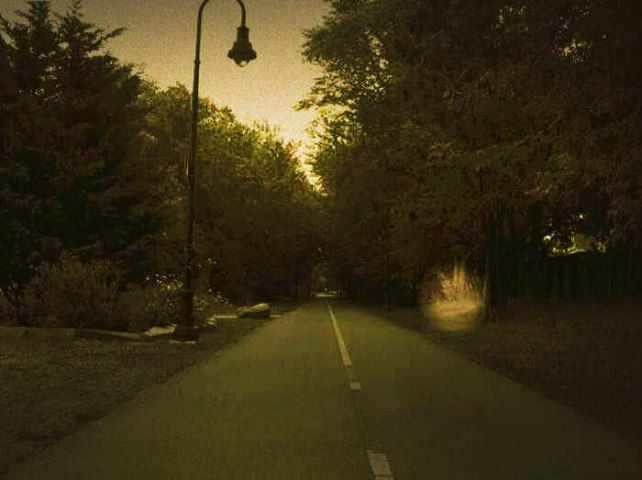 A haunted road in the Delhi Cantonment area