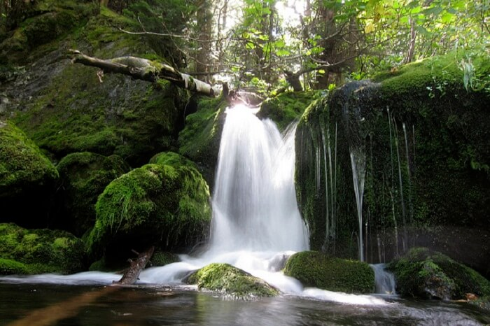 The scenic beauty of Mossy Falls is a popular tourist attraction in Mussoorie