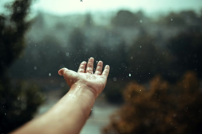 Real Snowflakes Falling Wallpaper 10 Things To Do In Monsoon In Mumbai That Will Reignite
