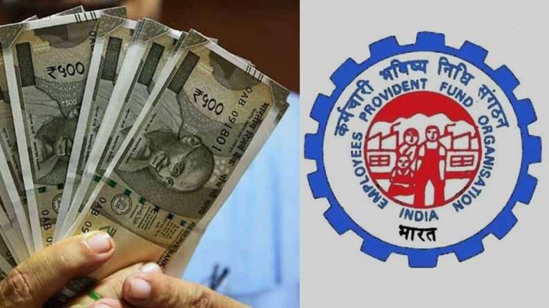 Government's big gift to 6 crore employees, now they will get more interest on PF money