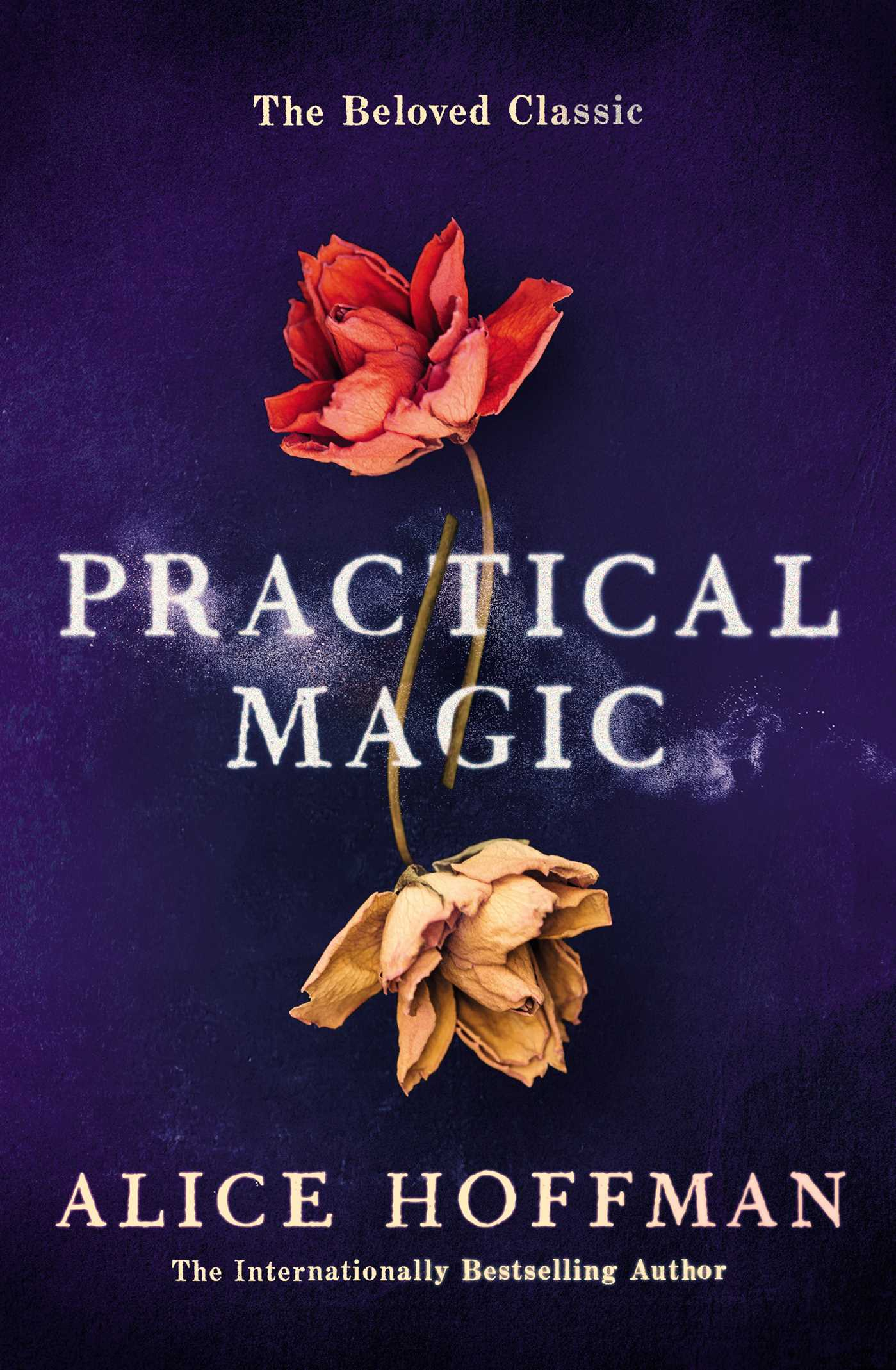 Image result for practical magic book cover