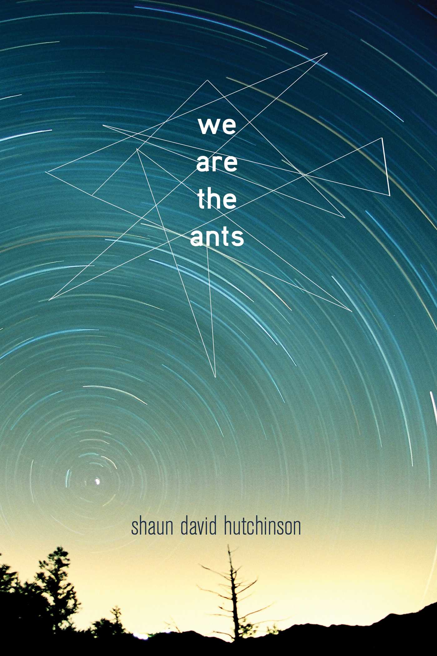 Afbeeldingsresultaat voor we are the ants shaun david hutchinson