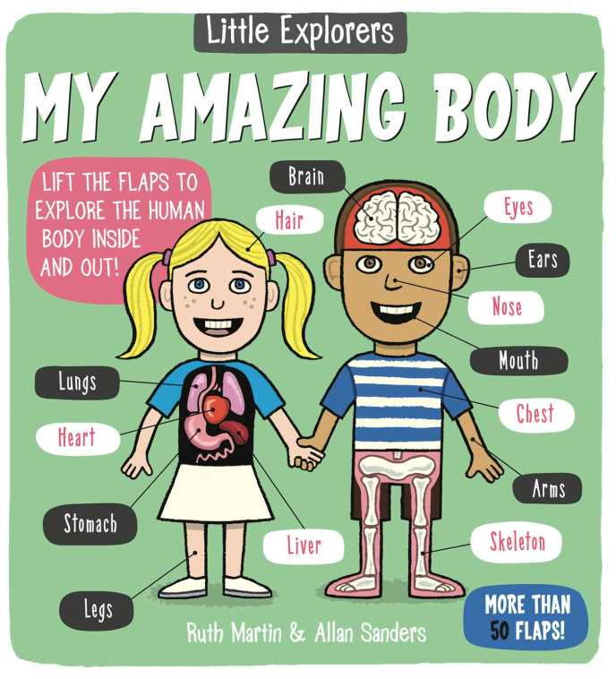 Little Explorers: My Amazing Body | Book by Ruth Martin ...