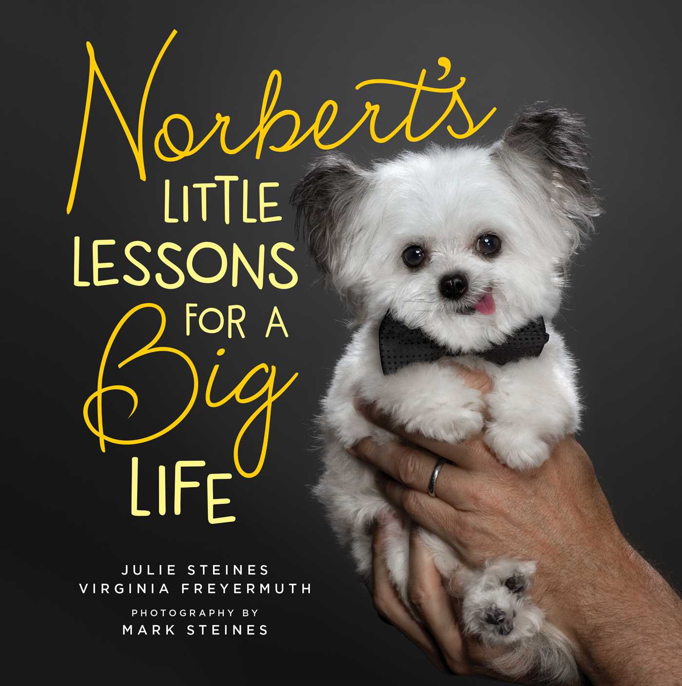 https://i0.wp.com/d28hgpri8am2if.cloudfront.net/book_images/onix/cvr9781501187315/norbert-s-little-lessons-for-a-big-life-9781501187315_hr.jpg