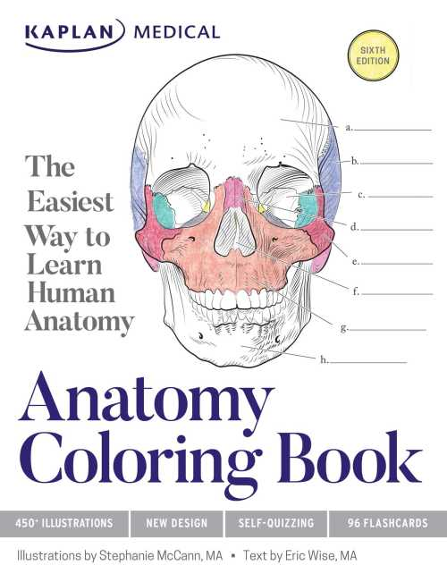 small resolution of anatomy coloring book book by stephanie mccann eric