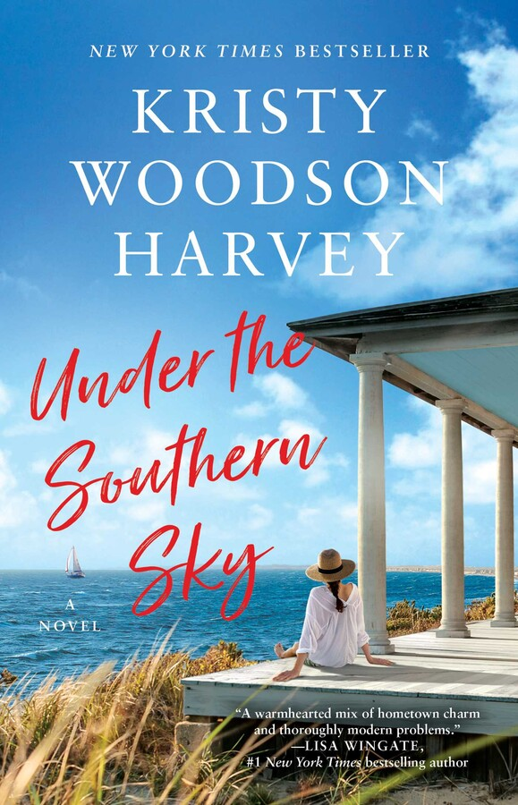 Under the Southern Sky book cover image from a June and July Reading Recap.