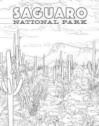 The National Parks Poster Coloring Book | Book by Ian ...