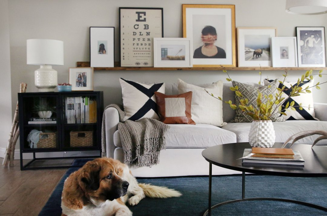 white living room furniture decorating ideas 2 sectional design fall crate and barrel blog a dog sitting on blue rug in front of fabric sofa next