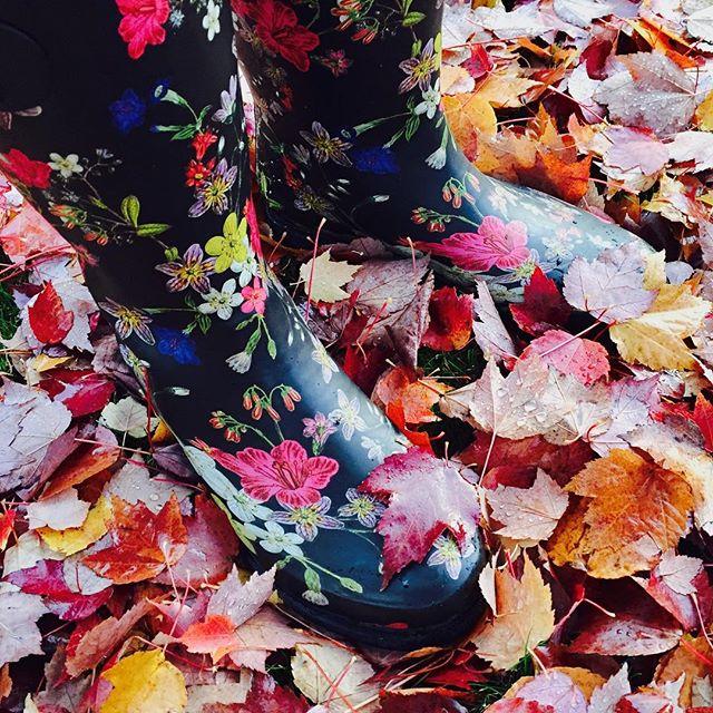 Women's Kalista Tall Rain Boots - Merona - Target Finds