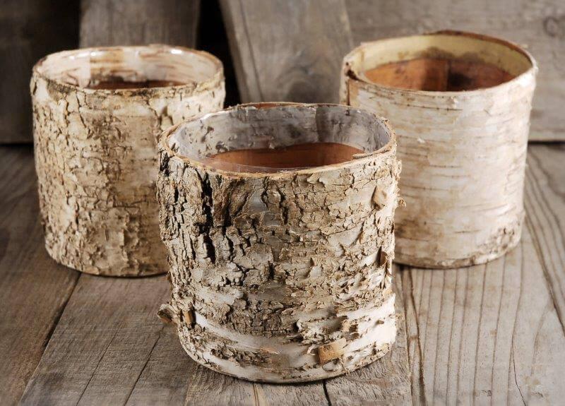 Birch Bark Planter 475 Pots w Plastic Liner