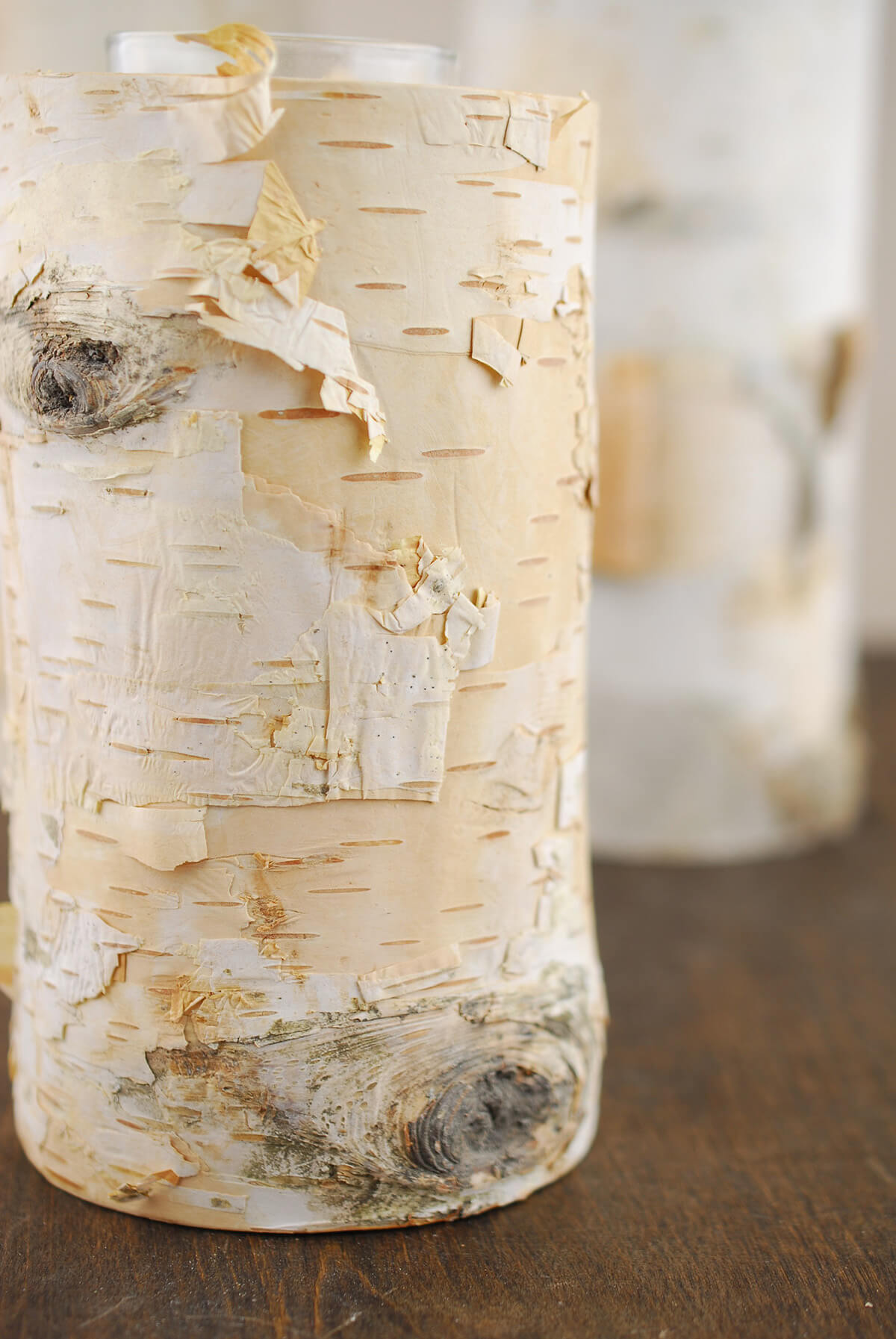 6 Natural Birch Tree Branch Candle Holders with Candle