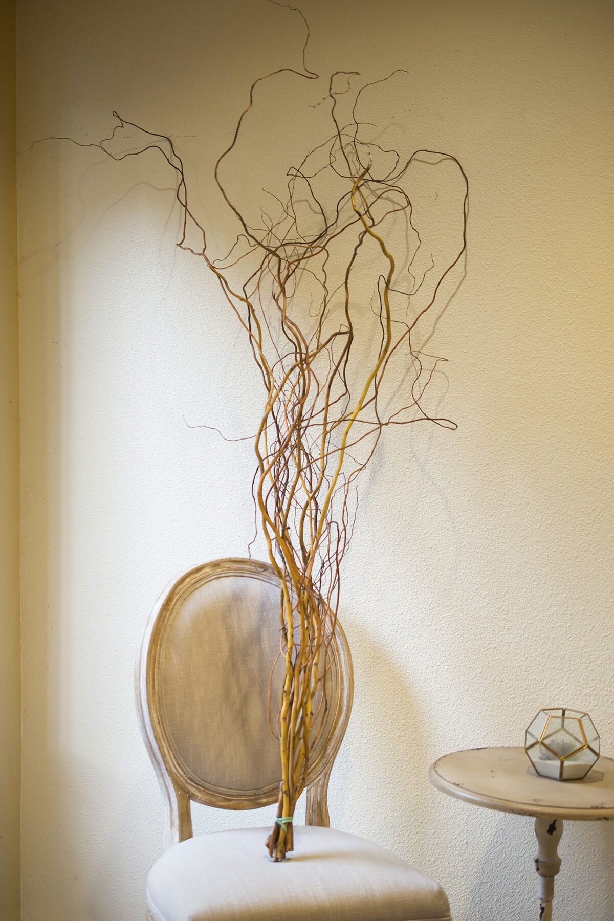 Orange  Yellow Curly Willow Branches 34FT