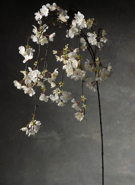 Hanging Cherry Blossom Branches White Silk Artificial 58